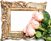 Old a gilded frame for the congratulatory inscription and roses