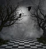 crows in a fantasy park