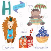 image of hippopotamus  - Alphabet design in a colorful style - JPG