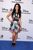 LOS ANGELES - MAY 19:  Edy Ganem at the Disney Media Networks International Upfronts at Walt Disney