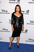 LOS ANGELES - MAY 19:  Ming-Na Wen at the Disney Media Networks International Upfronts at Walt Disney Studios on May 19, 2013 in Burbank, CA