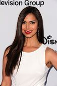 LOS ANGELES - MAY 19:  Roselyn Sanchez at the Disney Media Networks International Upfronts at Walt D