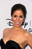 LOS ANGELES - MAY 19:  Ana Ortiz at the Disney Media Networks International Upfronts at Walt Disney