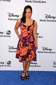LOS ANGELES - MAY 19:  Judy Reyes at the Disney Media Networks International Upfronts at Walt Disney