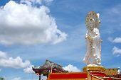 Guan Yin Whit Cloud Sky