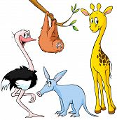 Cute Exotic Animal - Giraffe, Sloth, Ostrich And Aardvark