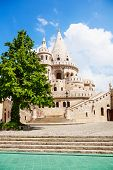 Fisherman's Bastion facade with tree in Budapest
