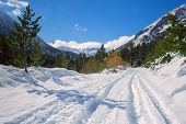 Winter Road In The Mountains Of Bulgaria