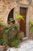 Door With Plants And Flowers (spello, Umbria, Italy.)