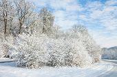 Winter Wonder Land - Road Under Snow