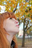 Dreamy Red Hair Girl Face With Freckles Against Red Autumn Foliage