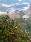 Machu Pichu Shrouded In Mist