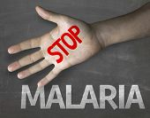 Creative composition with the message Stop Malaria
