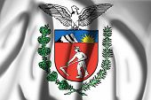 Coat of Arms of Parana State, Brazil