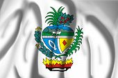 picture of bandeiras  - Flag of Coat of arms of Goias - JPG