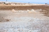 picture of tozeur  - Chott el Djerid (biggest salt lake in north africa) Tunisia