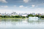 picture of fountain grass  - View of Sao Paulo city from Ibirapuera Park - JPG