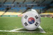 South Korea soccer ball on the soccer field