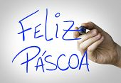 Feliz Pascoa (Happy Easter) hand writing on blue marker on transparent wipe board