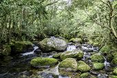 Waterfall and blue stream in Mututu, Minas Gerais, Brazil