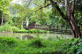 Bridge Across The Green Garden