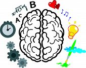 picture of right brain  - This vector illustrates the use of brain hemispheres - JPG