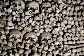 Old Bones, Skulls In Sedlec Ossuary (Kostnice)