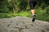 young fitness woman runner legs running at forest trail