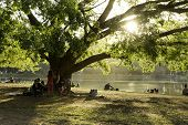 SAO PAULO, BRAZIL - CIRCA AUGUST 2014: People enjoy the Ibirapuera Park in summer time. Ibirapuera Park is the largest park in Sao Paulo, Brazil.
