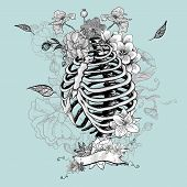 picture of skeleton  - Skeleton Ribs and Flowers - JPG