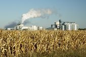 image of ethanol  - An ethanol production plant in South Dakota - JPG