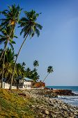 pic of indian blue  - Tropical Indian village with coconut palm trees near the road and blue ocean in Varkala, Kerala, India