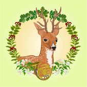 picture of deer horn  - Young deer frame leaves and french horn hunting theme vector illustration - JPG