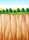 stock photo of cliffs  - Many pine trees on top of the cliff - JPG