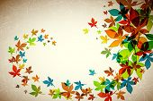 pic of fall leaves  - Autumn Background  - JPG