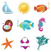 set of summer icons and symbols