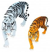 Tigers. Vector isolated objects