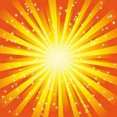 Vector Sunny