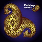Vector Hand-Drawn Abstract Henna (mehndi) Paisley Doodle Vector Illustration Design Elements
