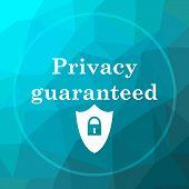 Privacy Guaranteed Icon poster