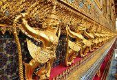 The gold garuda at the emerald buddha temple