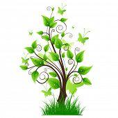 Vector magic tree