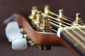 Close up of tuning peg on acoustic guitar headstock
