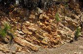 Tropical Rocks In Noumea