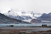 Patagonia hiking group in Tierra del Fuego