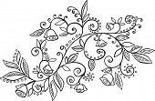 Flowers & Vines Vector Illustration