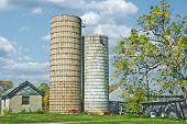 Grain Silo On The Farm