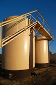 Tan Oil Storage Tanks