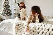 Young Girl Plays With Her Dog On The Bed. Beagle And Girl Laugh Together. Funny Dog And Pretty Cauca poster
