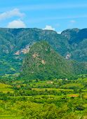 The Vinales valley in Cuba, a famous tourist destination and a major tobacco growing area poster